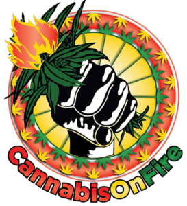 cannabis-on-fire-logo-new